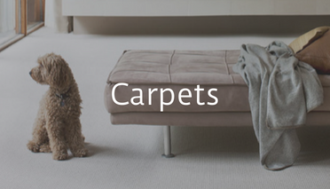 Artificial Carpets